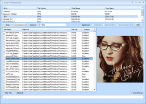 Puran file recovery data free